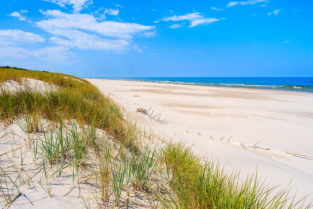 Widok na plaze w debkach
